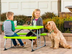 Kid's Lime Bench Table