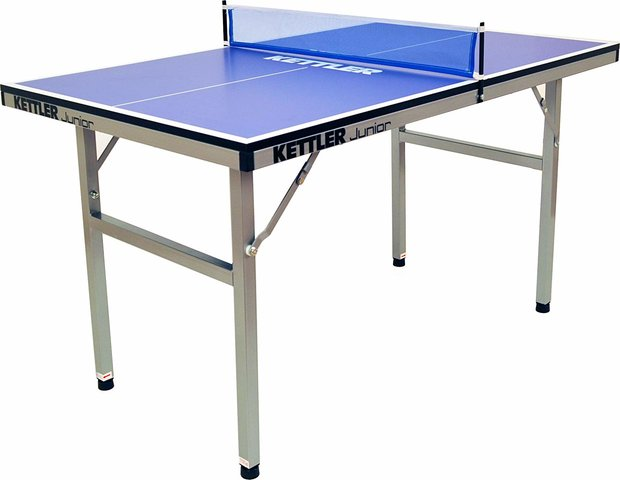 Ping Pong Table (mid-sized)