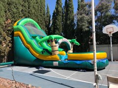 20FT Tropical Water Slide
