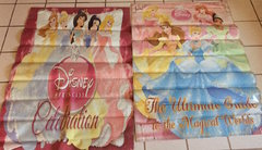 2 Banner - Disney Princesses