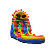 Sun Splash Inflatable Waterslide