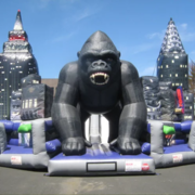 King Kong Revenge Obstacle Course