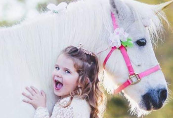Ponies and Unicorn Rentals from Carolina Fun Factory