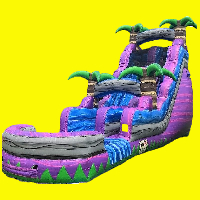 Purple Oasis 18ft water slide