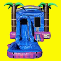 Mini Purple Crush Bounce House with Water Slide and Pool