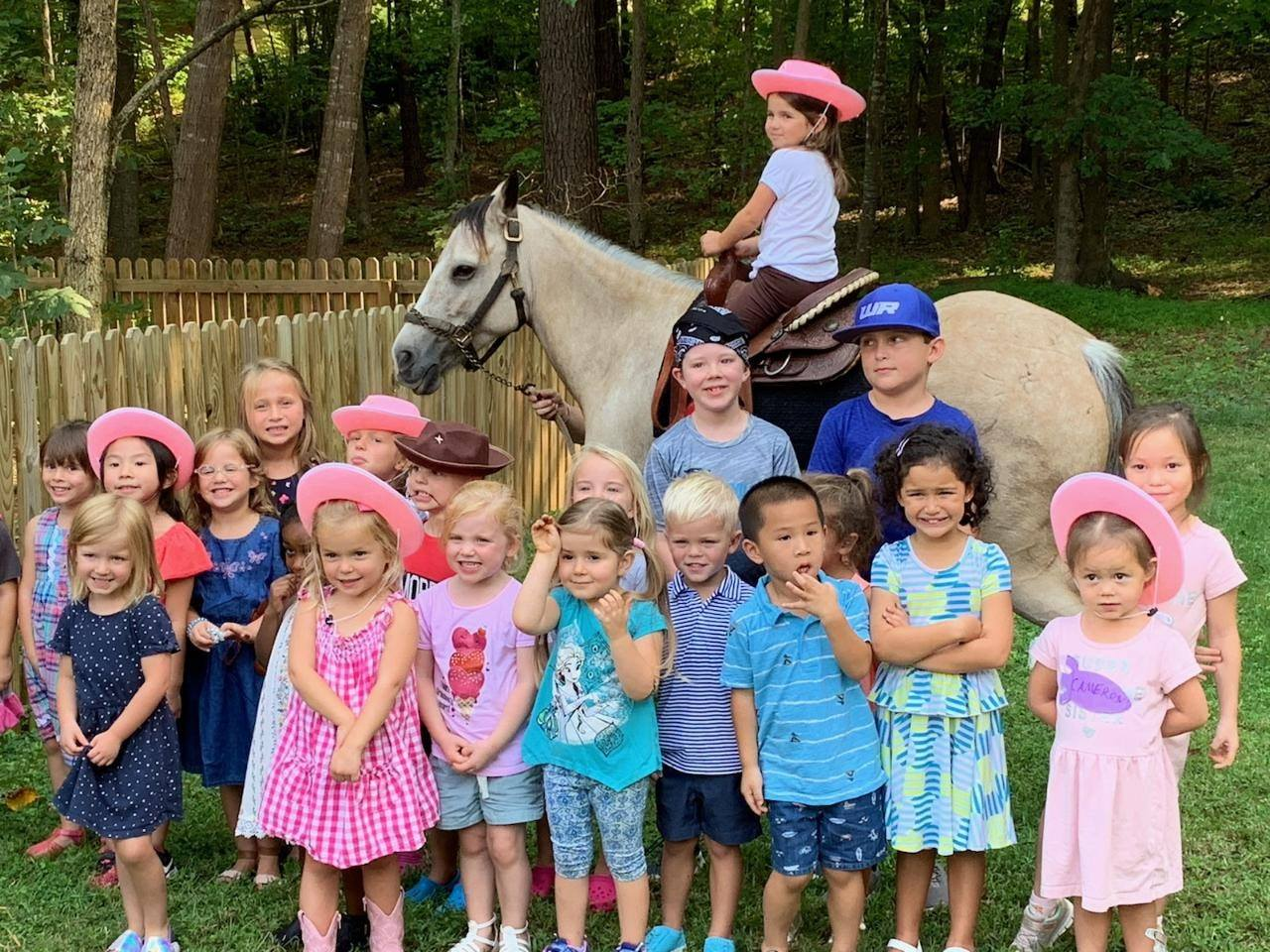 Click HERE for Raleigh NC Pony Ride Party Rentals
