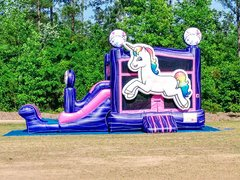 Unicorn Bounce and Slide Combo DRY