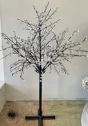 Decor: Lighted Tree  - Black w/cool white lights