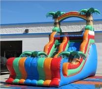Tropical 20 Ft. Slide Wet