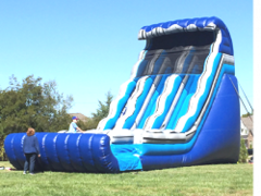 22 ft DUAL LANE SLIDE (DRY)