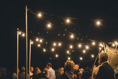 Festoon Lighting (25 ft Strand)