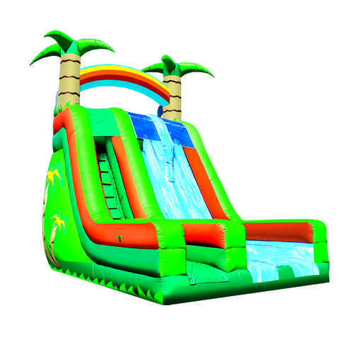 27' Tropical Dual Lane Slide Dry