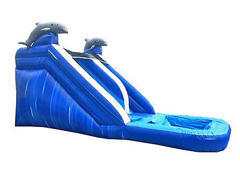 14ft Dolphin Dry Slide