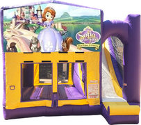 Sofia the First Purple Fun Time Combo