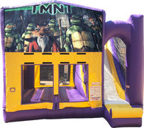 Teenage Mutant Ninja Turtles Purple Fun Time Combo