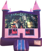 Teenage Mutant Ninja Turtles Purple Castle