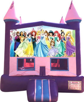 Disney Princess Purple Castle