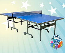 Indoor/Outdoor Table Tennis / Ping Pong