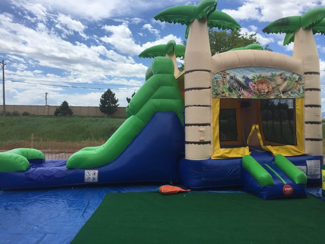 Safari waterslide bouncer combo