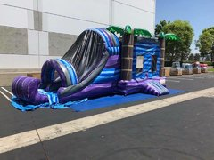 Tropical Paradise Bounce Dual Slide Combo Wet/Dry