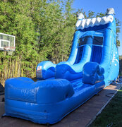 18' Dolphin slide wet