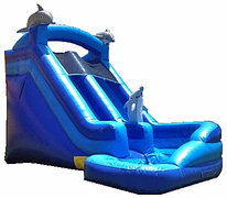 Dolphin Mega Water Slide