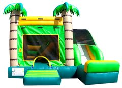 Tropical 4 in 1 Jumper Slide Combo