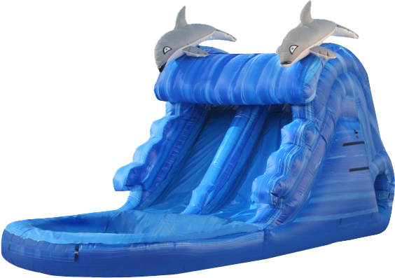 Swim With the Dolphins Water Slide 529