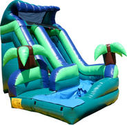 Tropical Curvy Water Slide w Pool 521