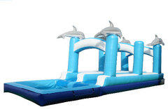 Dolphin Slip-n-Slide w Pool 800