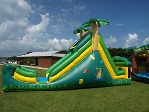 Alligator Alley Water Slide