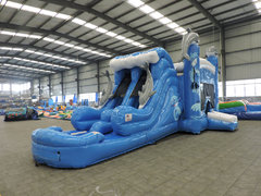 Dolphin World 4-in-1 Water Slide