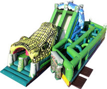 Jungle Alligator Obstacle Course