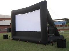 12x9 Movie Screen w/ Full AV Setup