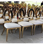 Dior Chairs/Golden Chairs