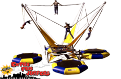 4 Person Euro Bungee -