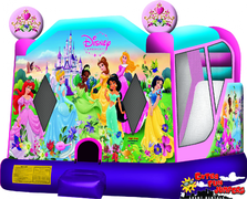 Large Disney Princess Combo 226