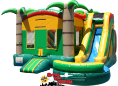 Jungle Combo Waterslide  with pool 237