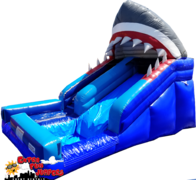 Lil' Shark Waterslide  with a pool 508 or 509