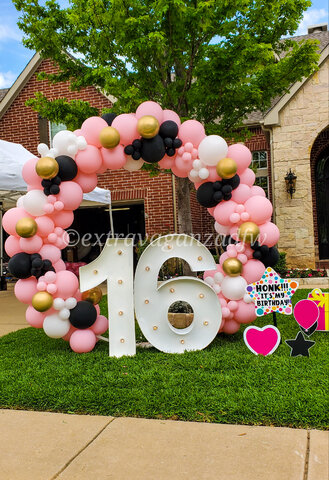 Balloon Round Arch  8ft x 8ft  $350