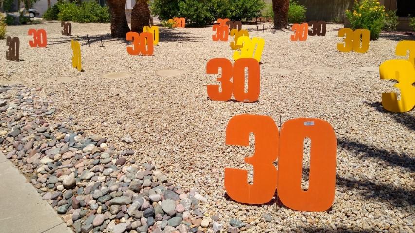 yard full of big #30s for birthday