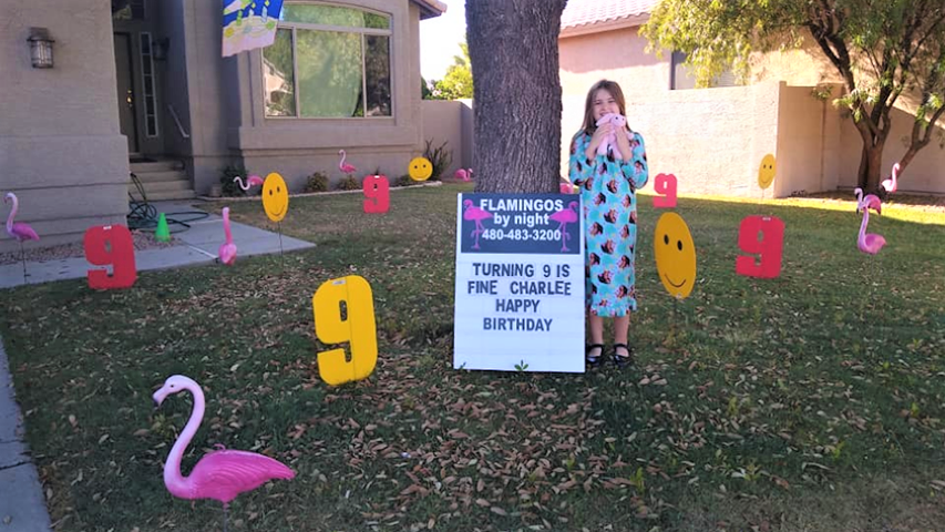 Happy 60th birthday with big number 60s and flamingos