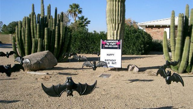 bats and dinosaurs yard decorations