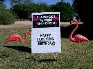 happy flocking birthday yard sign with flamingos