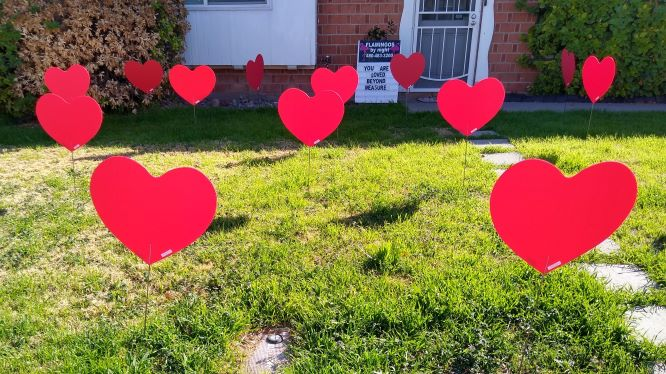 30 big red hearts in her yard for Fathers Day