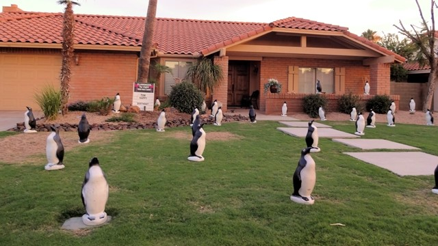 30 penguins in a front yard for a birthday