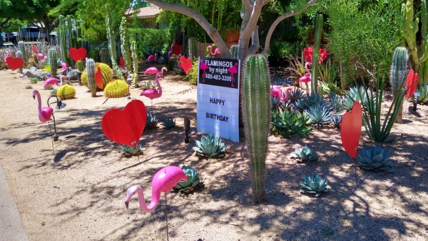 flamingos and big red hearts decorations in yard