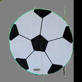 adopt a soccer ball or a team