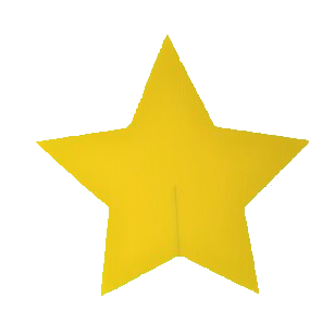 adopt stars for your own star