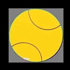 adopt a tennis ball or a whole game